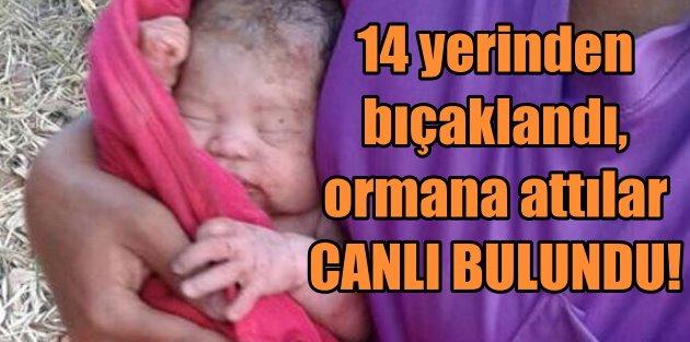 14 yerinden bıçaklanan, ormana atılan bebek canlı bulundu
