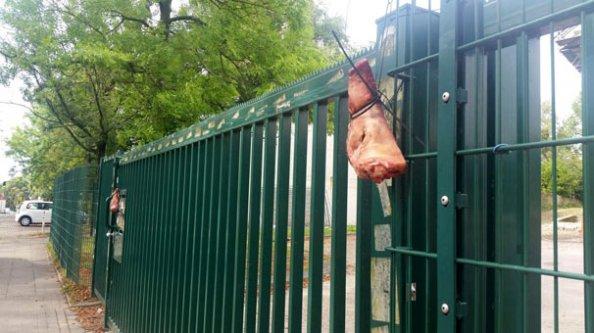 Büyük skandal! Camiye domuz kafası astılar