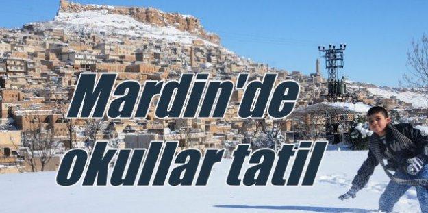 Mardin'de okullar tatil; Kara kış Mardin'i vurdu