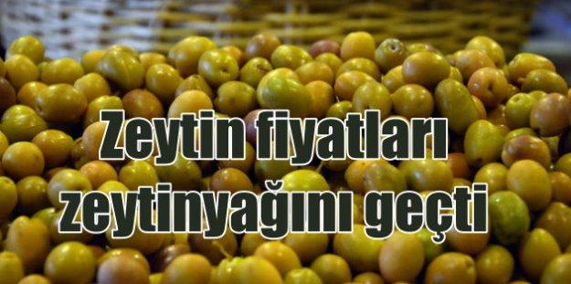 Zeytinciler bile şaşırdı: Zeytin düştü, zeytinyağı fırladı