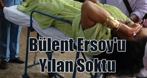 Bülent Ersoy'u yılan soktu: Diva Hindistan'ta ölümden döndü