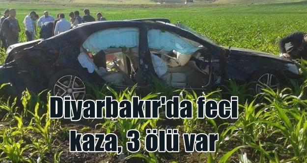 Diyarbakır'da tarlaya uçan lüks araç içinde 3 kişi can verdi