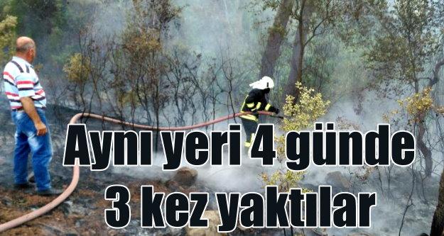 Ortaca'da aynı yerde 4 günde 3 yangın birden çıktı
