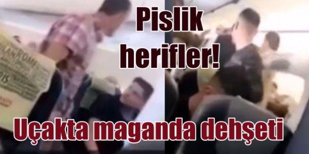 Türk yolcuların uçaktaki kavgası Hollanda'da alay konusu oldu