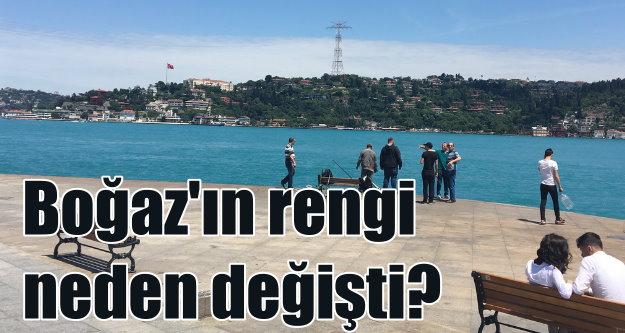 İstanbul Boğazı'nın rengi neden değişti?