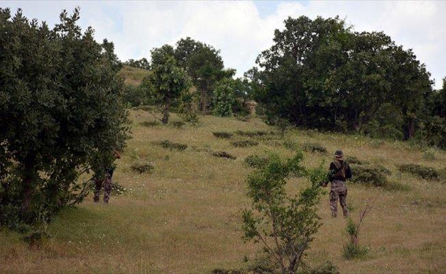 Muş ve Bitlis'te 4 terörist etkisiz hale getirildi