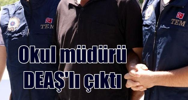 Okul müdürü DEAŞ'li terörist çıktı