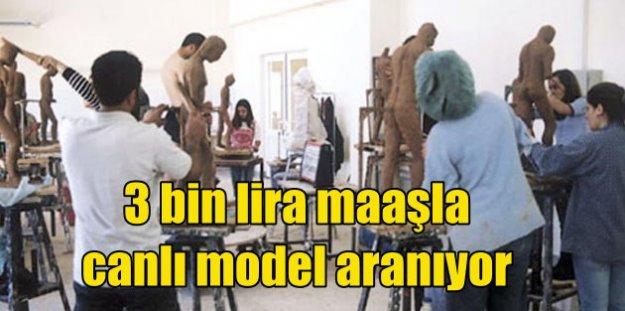 Üniversite 3 bin lira maaşla canlı model arıyor