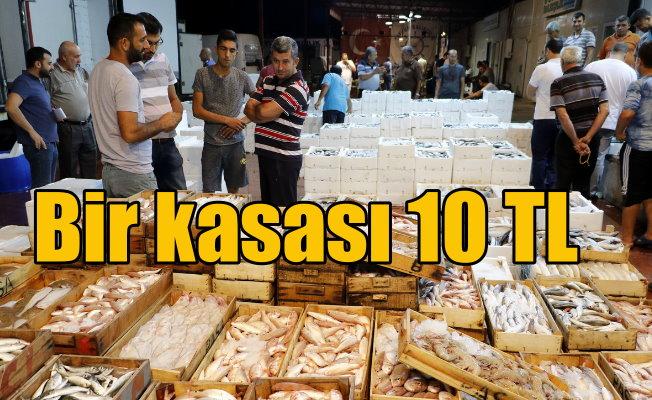 Bir kasa balık, bir kilo tavuk fiyatına satıldı