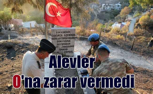 Mezarlık yandı, şehitlikteki Türk Bayrağı yanmadı