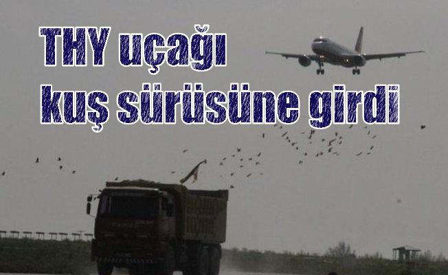 Havada kuş paniği; THY uçağı tehlike atlattı