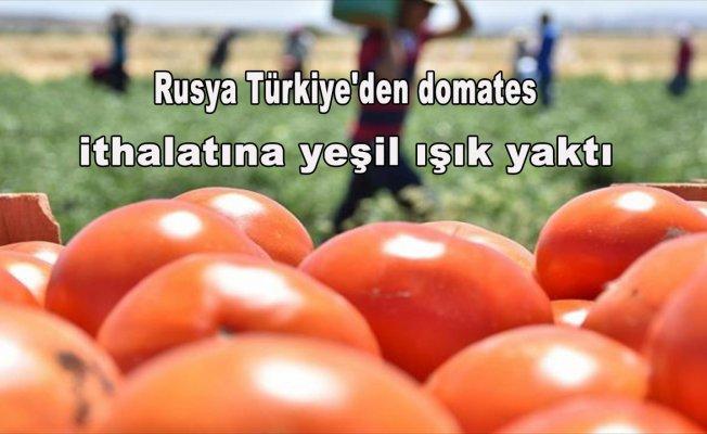 Rusya Türkiye'den domates ithalatına yeşil ışık yaktı