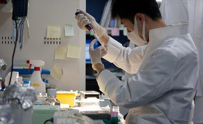 Hematoloji ve onkoloji tanısında 'yapay zeka' rol oynayacak