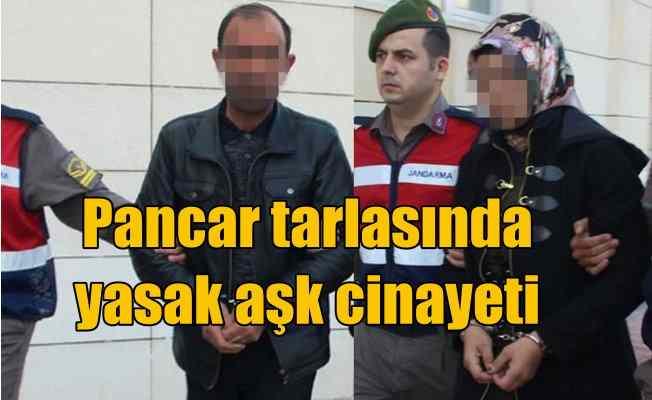 Pancar tarlasındaki cinayetten yasak aşk çıktı