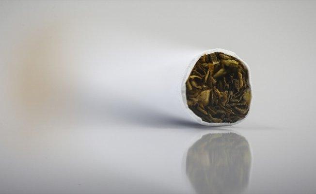 Sağlık Bilimleri Üniversitesi Rektörü Erdöl: Sigara diyabet riskini iki kat artırıyor