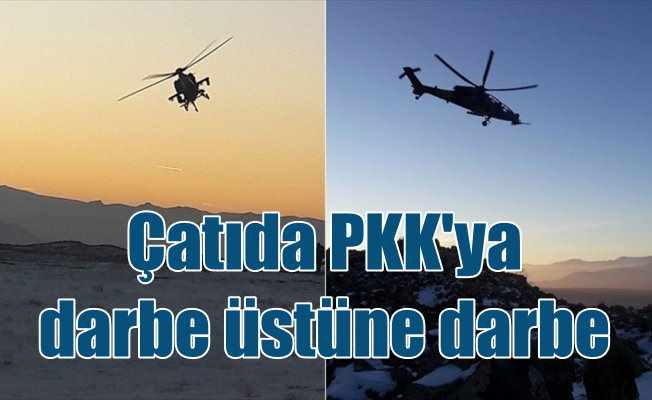 'Türkiye'nin çatısı'ndaki terör operasyonu sürüyor