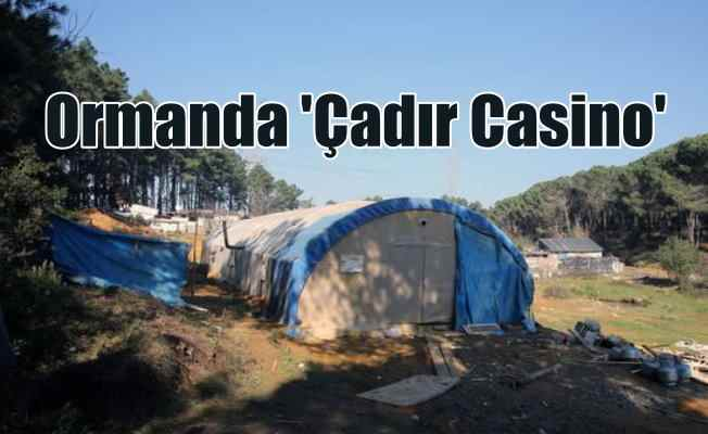 Ormanda kumarhane: Çadır Casino'yu polis bastı