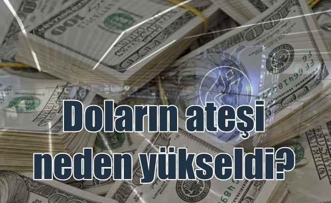 Dolar yeniden yükselişe geçti, borsada düştü..