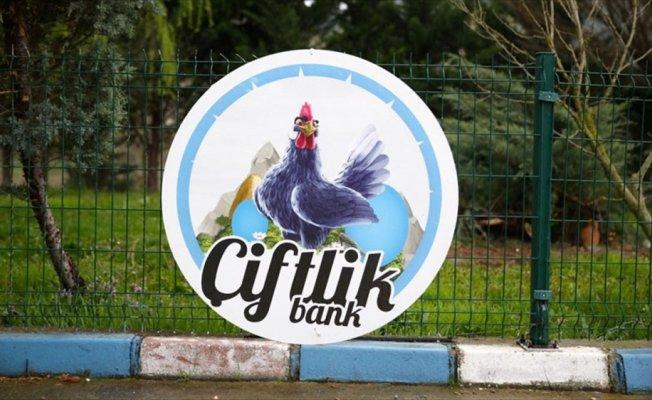 'Çiftlik Bank' tesisindeki tavuklar satıldı