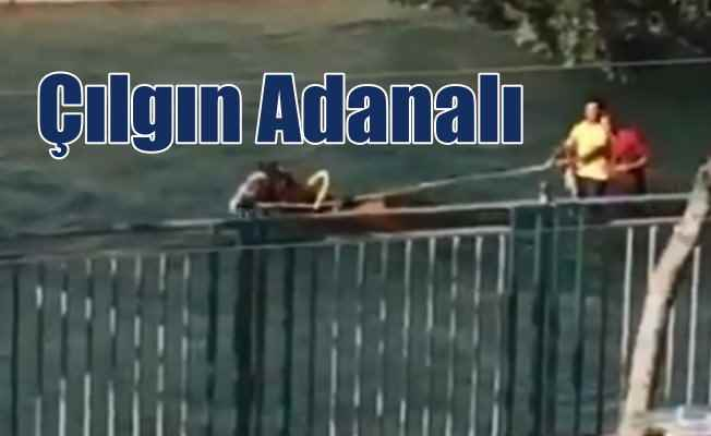 Adana Belediyesi'nden güldüren mesaj; Kanalda da yasak