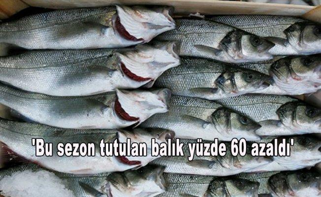 'Bu sezon tutulan balık yüzde 60 azaldı'