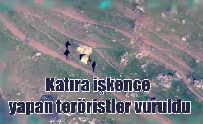Katırla patlayıcı taşıyan teröristler SİHA ile vuruldu