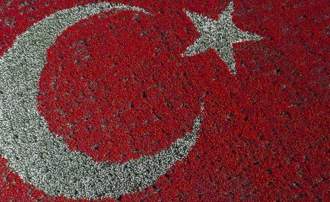 Laleden Türk bayrağı dünya rekoru getirdi