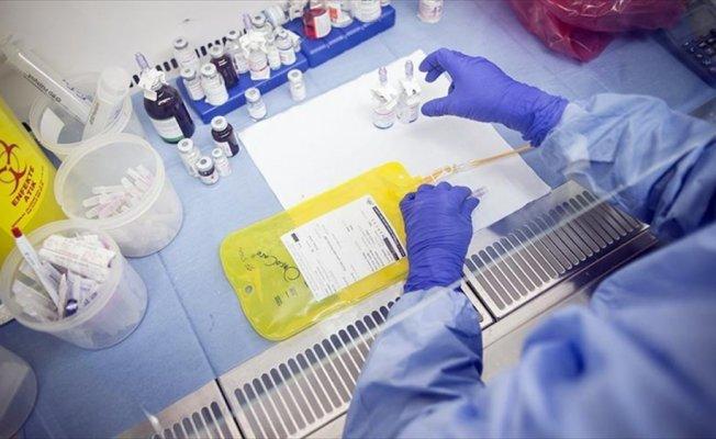 Rahim ağzı kanseri 2 dakikada bir can alıyor