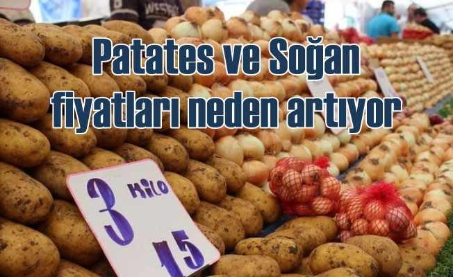 Patates ve soğan fiyatları neden artıyor
