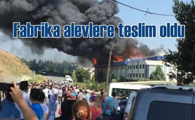 Hadımköy'de tekstil fabrikasında yangın
