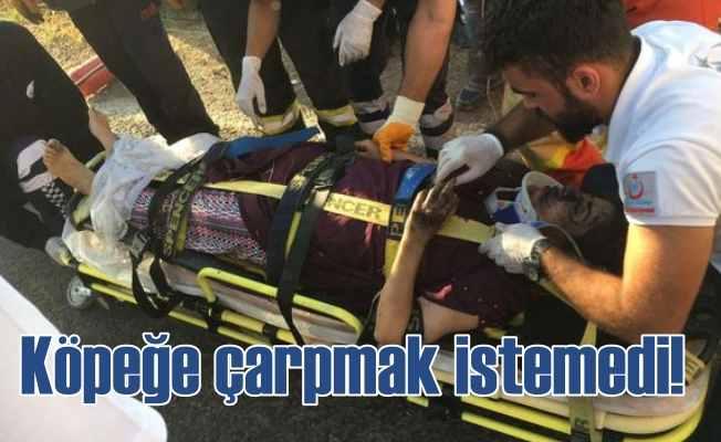 Köpeğe çarpmamak için: Mardin'de feci kaza, 2 ölü 6 yaralı var