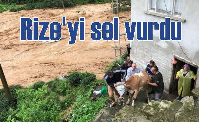 Rize'yi sel vurdu: Dereler taştı, evler sular altında kaldı