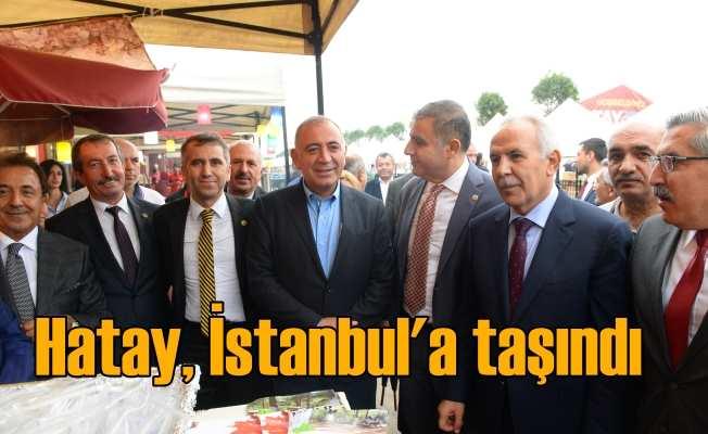 Hatay İstanbul'a taşındı: Hatay Günleri devam ediyor