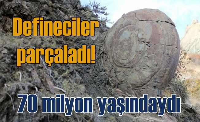 70 milyon yıllık Salyangoz Kaya definecilerin kurbanı oldu
