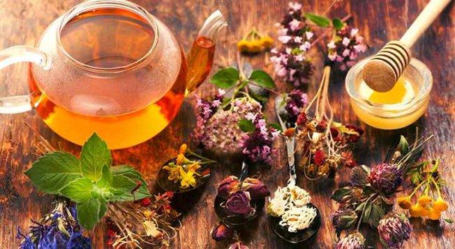 Bitkisel tedaviye dikkat; Zehir olmasın şifa olsun