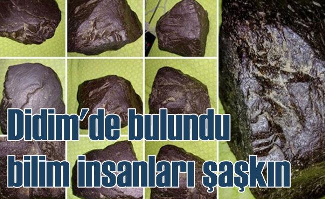 Didim'de meteor bulundu: Bilim insanları şaşkın