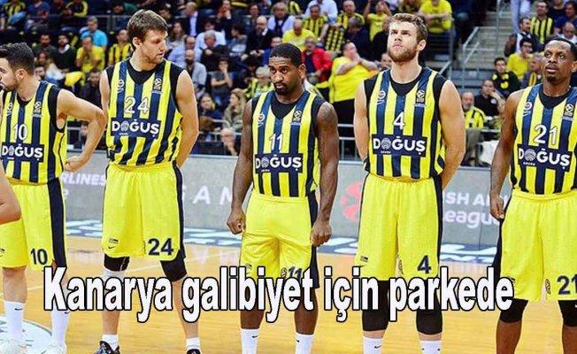 Fenerbahçe galibiyet serisine devam etmek istiyor