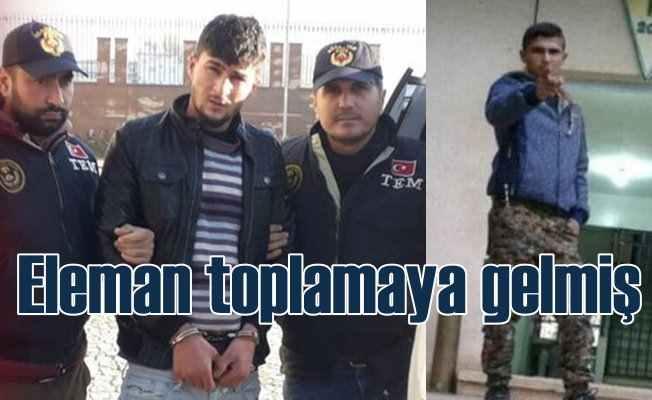 PKK - YPG'ye eleman toplamak için gelmiş