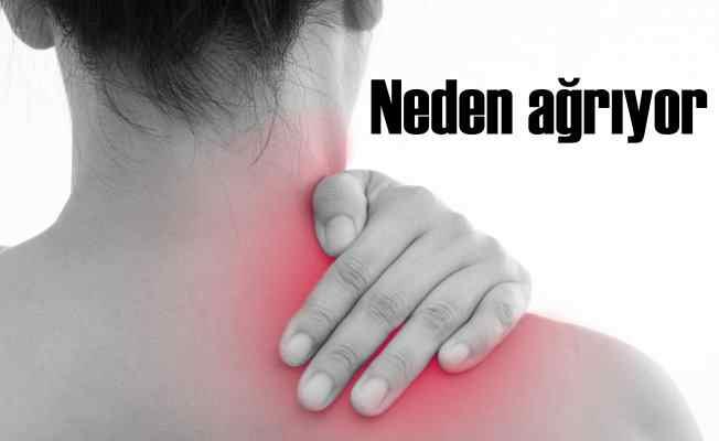 Neden ağrıyor; Geçmeyen omuz ağrıları için uzman tavsiyesi