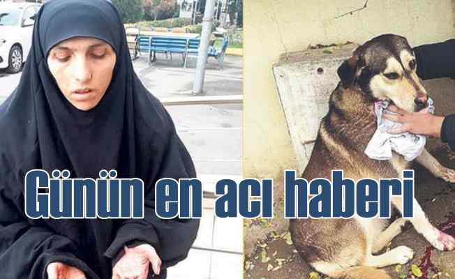 Sokak hayvanlarını keserek yiyen kadın yakalandı