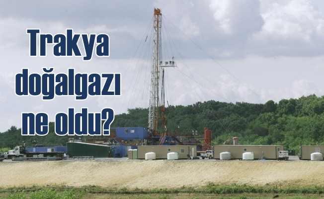 Trakya'da doğalgaz var mı? Yok mu?