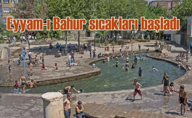 Eyyam-ı Bahur sıcakları bunalttı | Bulabilen havuza bulamayan gölgeye koştu