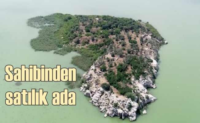 Marmara'da 45 dönümlük ada, 17 milyon liraya satılık