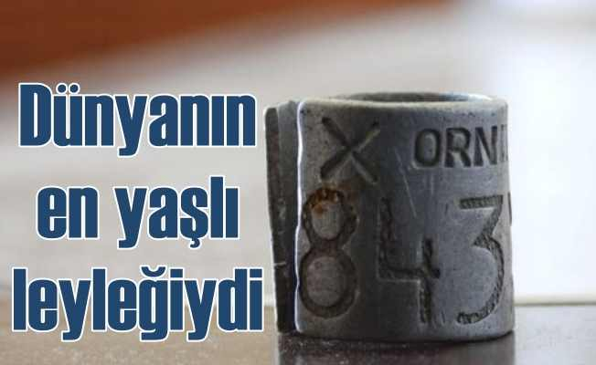 Dünyanın en yaşlı leyleğiydi Eskişehir'de tellere can verdi