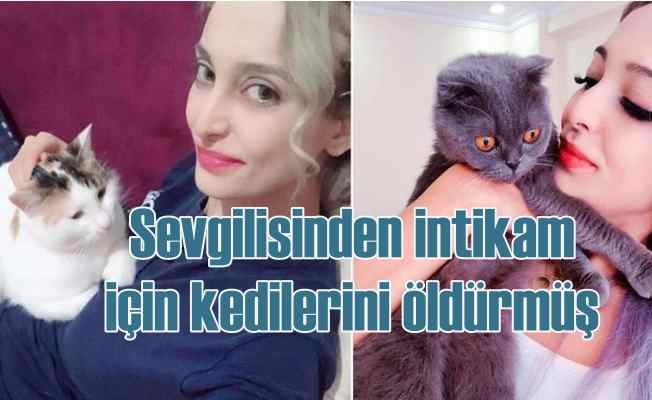 Sevgilisini korkutmak için 5 kediyi vahşice öldürdü