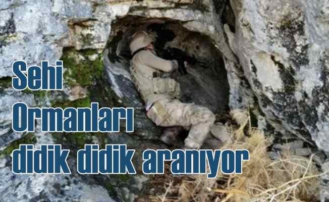 Bitlis Sehi Ormanları'nda Kıran-8 harekatı başladı
