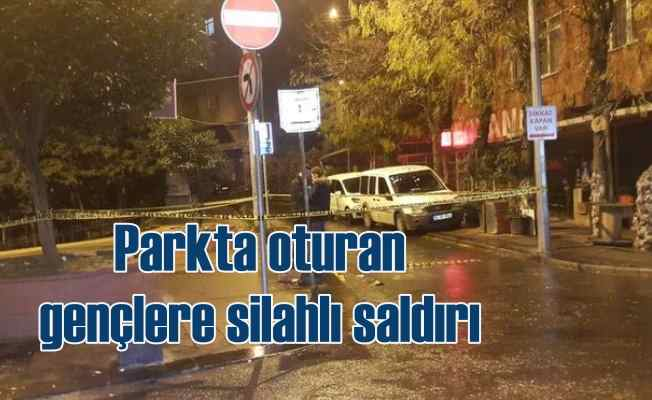 Parkta oturan gençlere silahlı saldırı