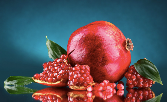 Tavas, Egeli gıda ihracatçılarının üretim merkezi olacak