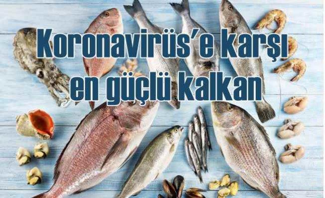 Koronavirüs'e karşı ilaç gibi besinler | Balık, yumurta ve beyaz et