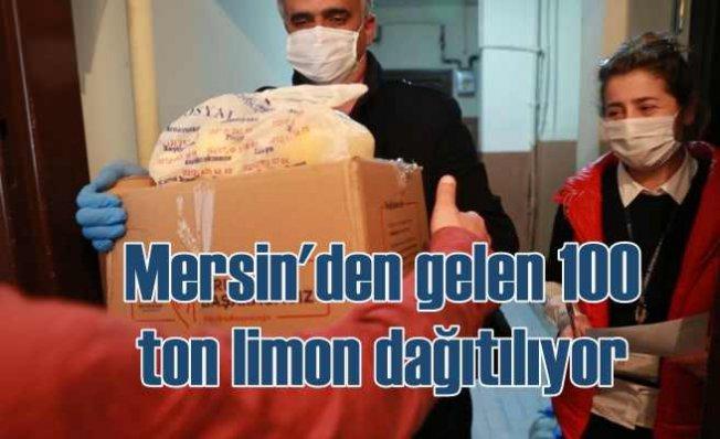 Mersin'den gelen limonlar İstanbul'da dağıtılıyor